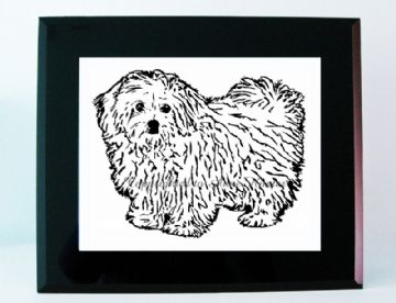Bichon Frise Dog Vinyl Picture